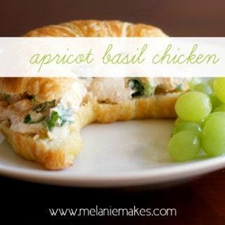 Apricot Basil Chicken Salad | Melanie Makes