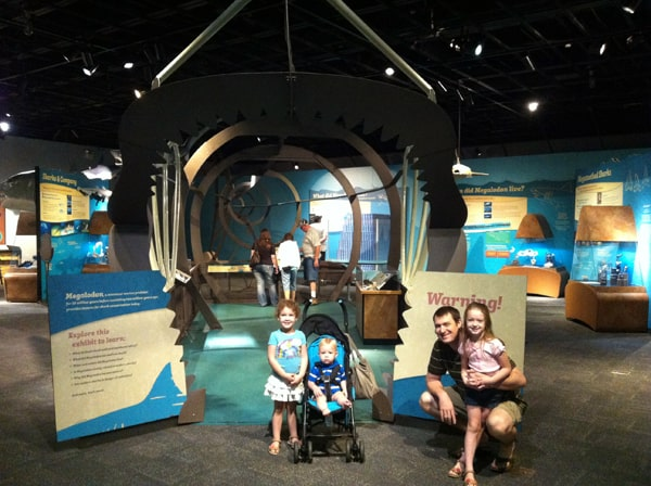 Cleveland Museum of Natural History - Megalodon Exhibit | @melaniebauer at Melanie Makes
