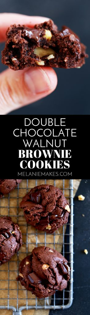 These delicious Double Chocolate Walnut Brownie Cookies contain a substantial amount of cocoa, melty chocolate chunks and chopped walnuts and take just 10 minutes to prepare. #chocolate #walnut #brownie #cookies #nut #easydessert #cookiejar