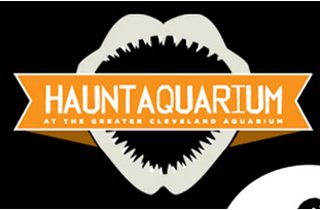Greater Cleveland Aquarium Hauntaquarium 2013 | @melaniebauer at Melanie Makes
