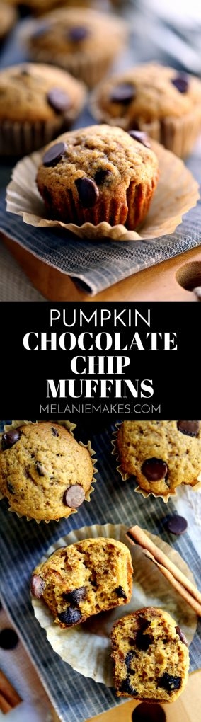 Pumpkin Chocolate Chip Muffins worthy of any autumn occasion, this batter takes just 10 minutes to prepare and is spiked with cinnamon, cloves and allspice before being studded with a generous amount of dark chocolate chips.