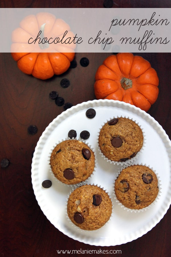 Pumpkin Chocolate Chip Muffins | @melaniebauer at Melanie Makes