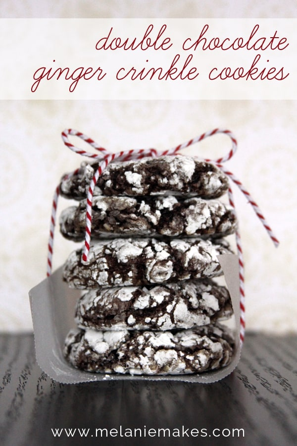 Double Chocolate Ginger Crinkle Cookies | @melaniebauer at Melanie Makes