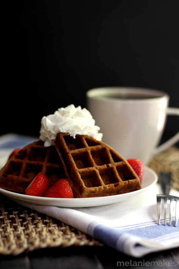 Chocolate Yogurt Waffles | Melanie Makes