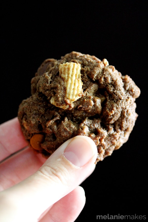 A chocolate flavored dough studded with chocolate chips, cinnamon chips and my favorite cinnamon and sugar flavored cereal.  A warm and comforting chocolate and cinnamon combination.  These Double Chocolate Cinnamon Crunch Cookies are the perfect choice to fill your cookie jar this Fall!
