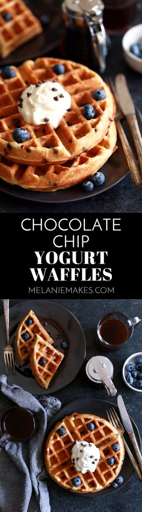 These Chocolate Chip Yogurt Waffles take just 10 minutes to prepare which means breakfast is on the table in no time! Studded with mini chocolate chips, these waffles get their signature flavor from plain whole milk yogurt and butter which helps to achieve their crisp exterior and light and fluffy interior. #chocolatechip #yogurt #waffles #breakfast #brunch