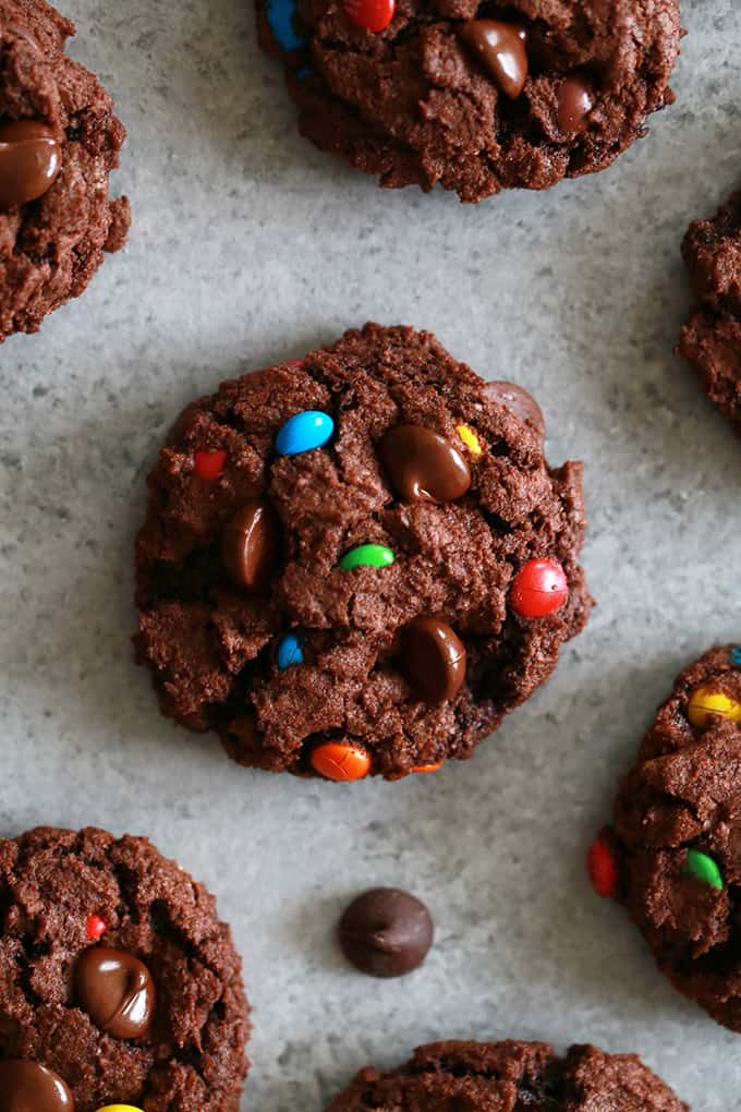 These Double Chocolate M&M Cookies are sure to be a new cookie jar staple. A cocoa infused chocolate chip cookie dough batter is bedazzled with dark chocolate chips and M&Ms candy, the perfect compliment to an icy cold glass of milk.
