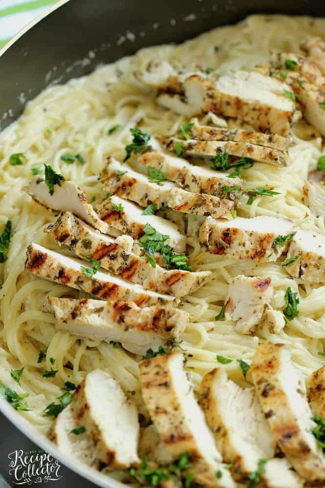 Basil Pesto Chicken Alfredo