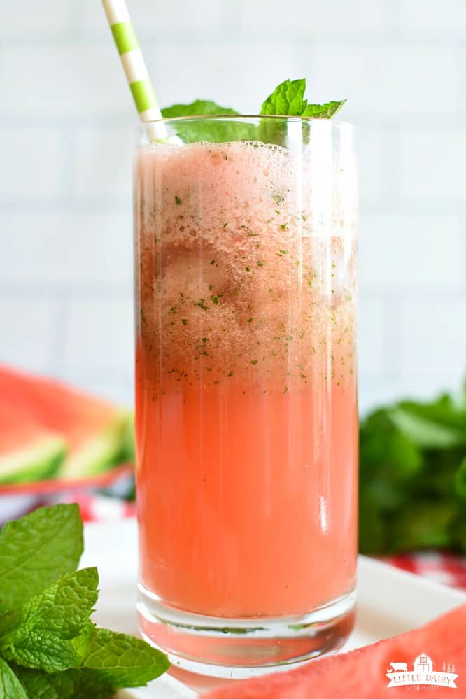 Slushy Watermelon Mint Lemonade