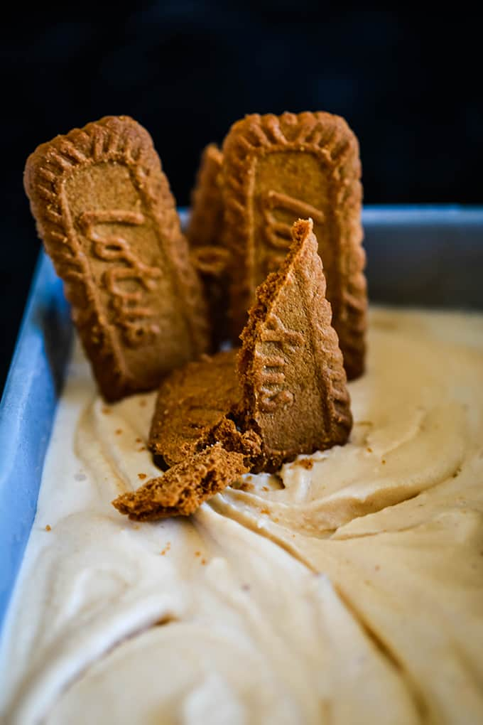 Speculoos cookies stand upright in a container of Biscoff Cookie Butter Ice Cream.